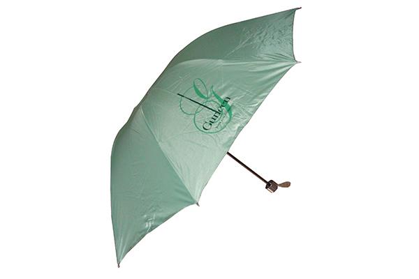 Gift promotion premium umbrella