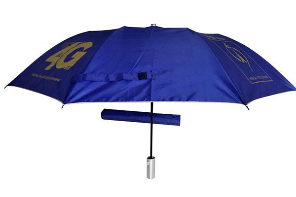 Two fold auto open umbrella